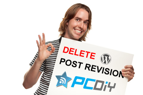 Delete Post Revisions in WordPress
